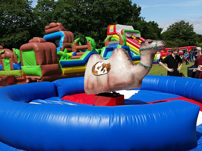 Bucking Camel Leisure Hire